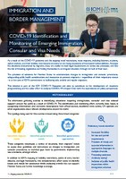 COVID-19 Emerging Immigration, Consular and Visa Needs & Recommendations