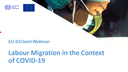 EU-ILO Joint Webinar on Migration during COVID-19