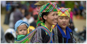 Policy Briefs on Internal Migration in Southeast Asia
