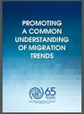 Promoting a common understanding of Migration Trends