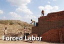 Verite eLearning - Forced Labour